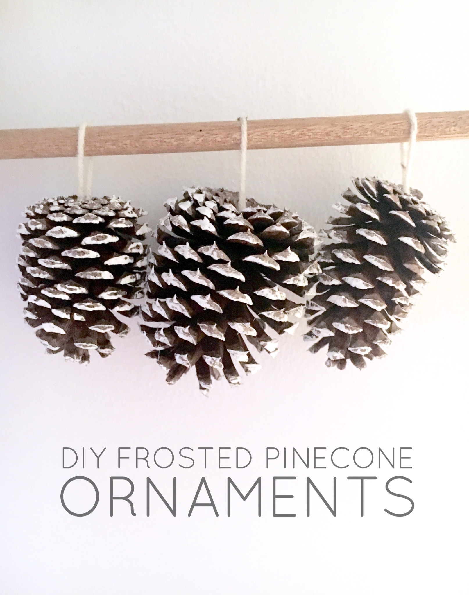 DIY Frosted Pinecone Ornaments