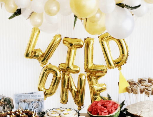 Jamie's diy where the wild things are first birthday