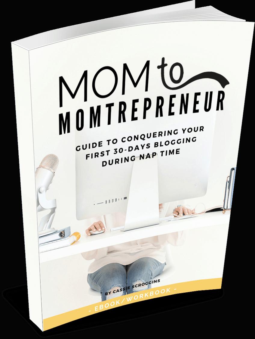 mom to momtrepreneur ebook