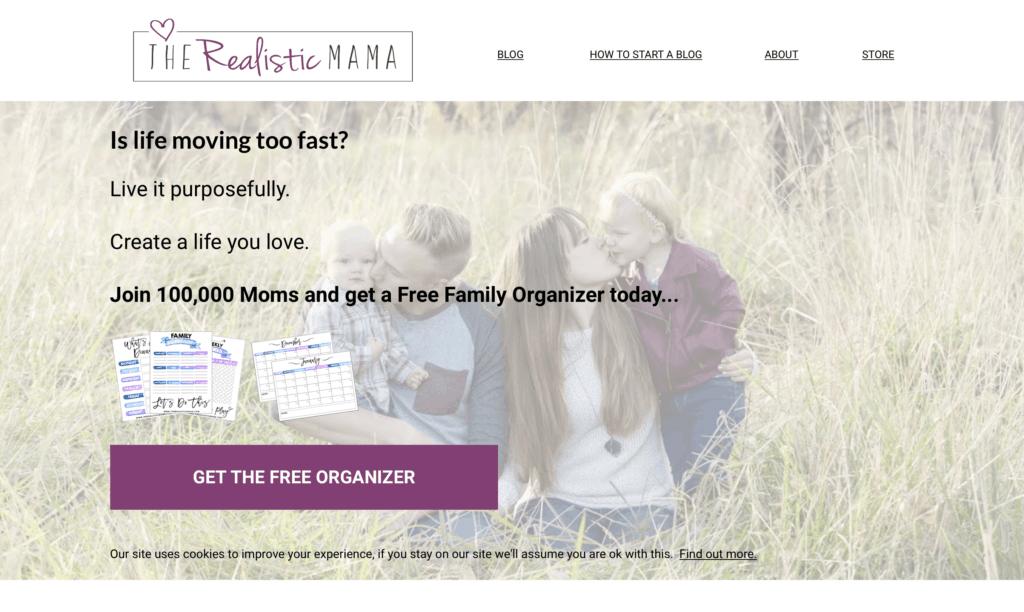 successful mom blog the realistic mama