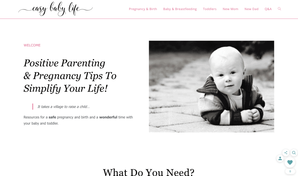 successful mom blog easy baby life