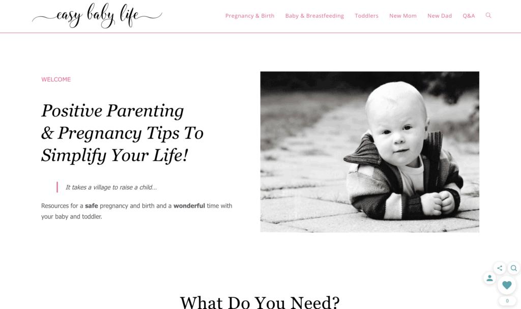 successful mom blog easy baby life